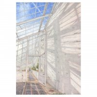 Mark Langley : Clumber Park Long Range Greenhouse